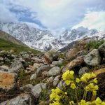 Shkhara Glacier