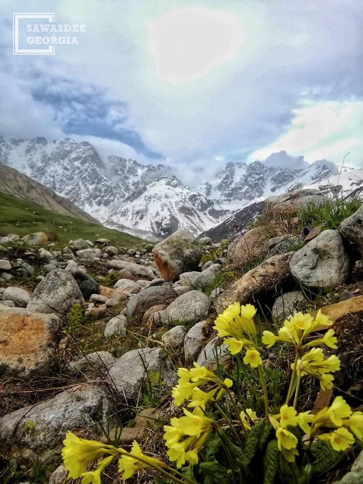 Shkhara glacier Ushguli